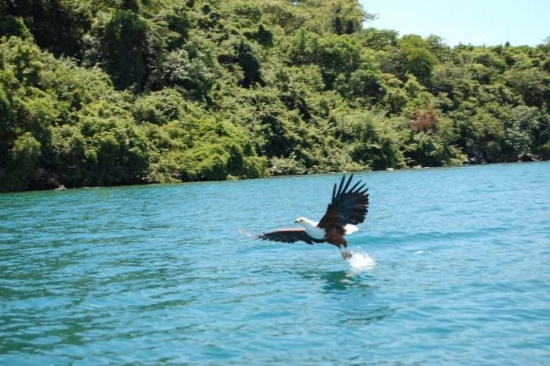 Озеро Ньяса фото