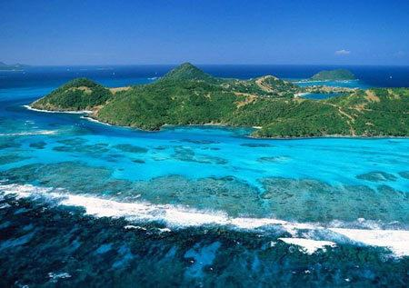 Природа на Барбадосе