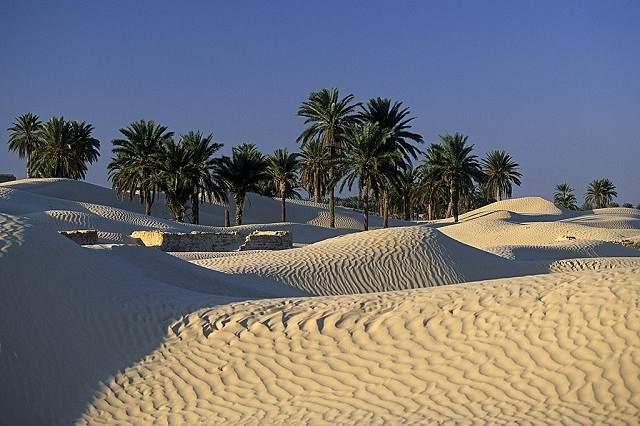 Сахара в окресностях Дуза