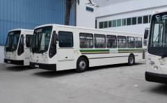 Автобусы в Тунисе
