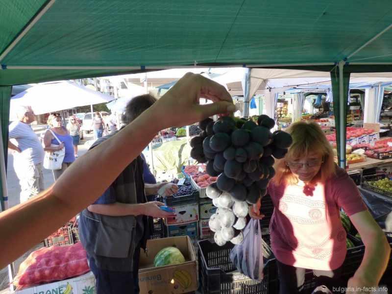 Ветка винограда на рынке