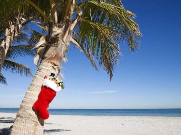 где лучше отдыхать в оаэ в декабре