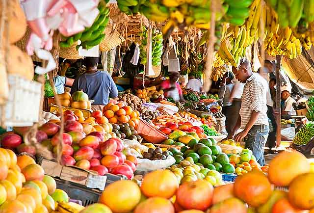 фрукты из Туниса