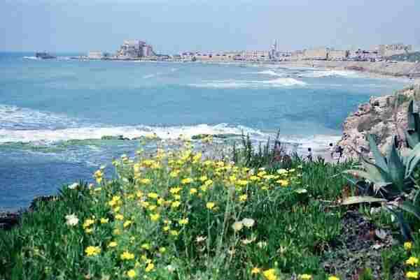температура воздуха и воды в марте в Израиле