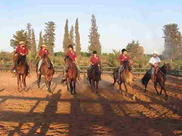 Центр верховой езды в Израиле. Обучение верховой езде в Израиле.
