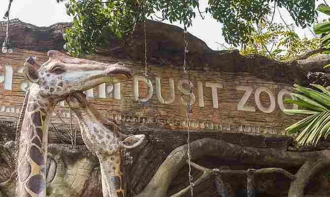Зоопарк дусит